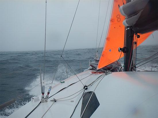 orang_sail_550