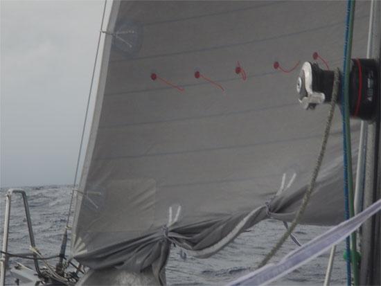 sail_b2ct_550