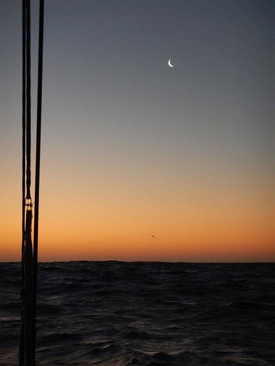 sliver_moon_550