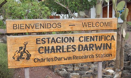 station_darwin_550
